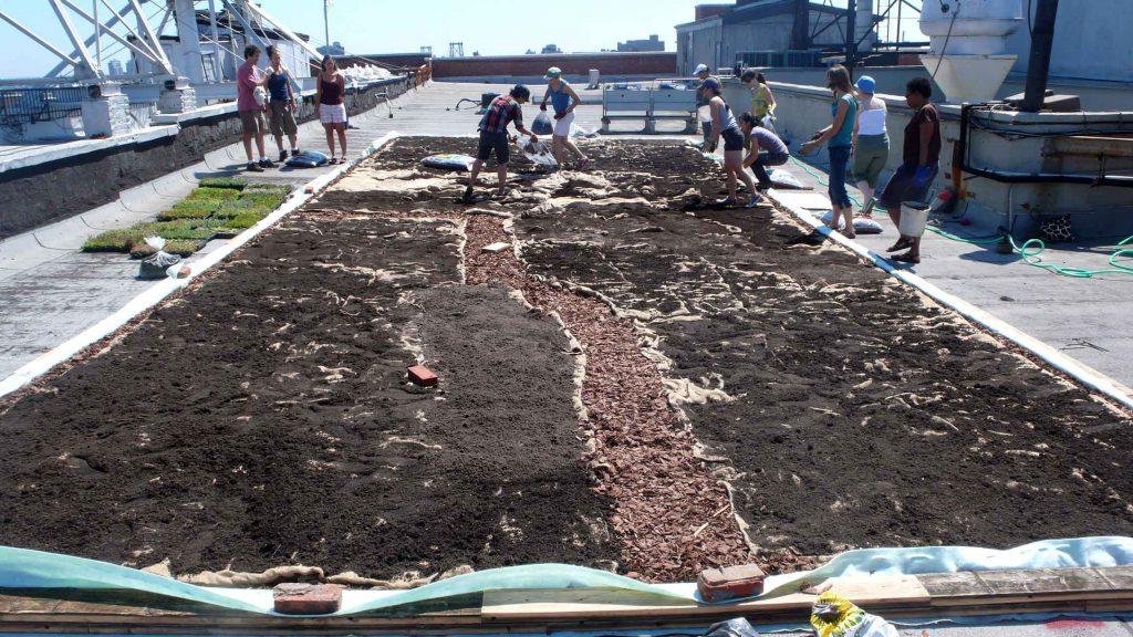 lea-atelier_cubierta-verde-nyc-compost